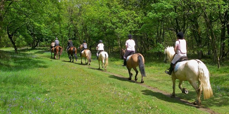 > 25-26/06 – Weekend a Cavallo sui Sentieri