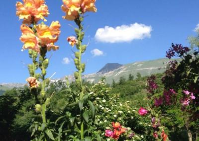 Agriturismo La Cittadella di Montemonaco sui Monti Sibillini5