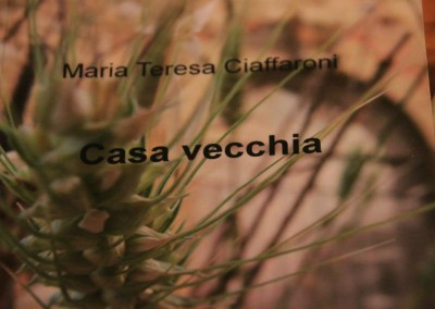 Presentazione del libro Casa Vecchia all Agriturismo La Cittadella dei Sibillini18