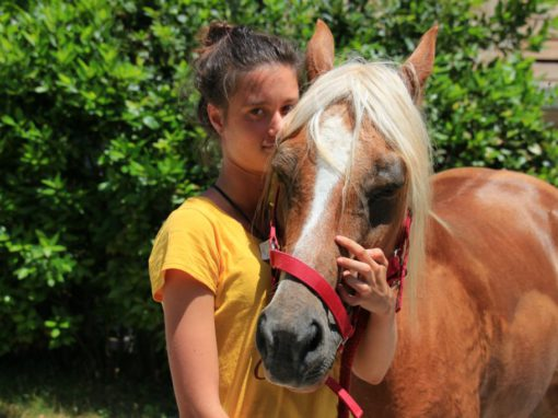 26 Giugno 2016 – Weekend del Cavallo al Centro Turistico Rurale La Cittadella