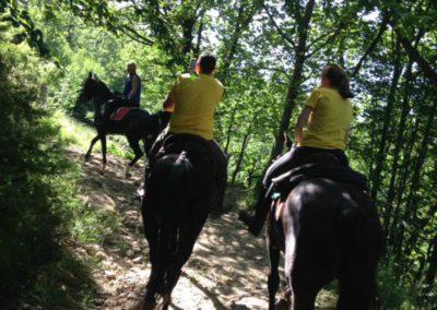 Weekend del Cavallo all Agriturismo La Cittadella di Montemonaco11