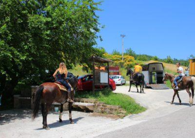 Weekend del Cavallo all Agriturismo La Cittadella di Montemonaco41