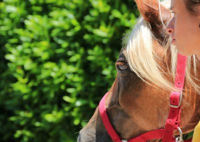 Weekend del Cavallo all Agriturismo La Cittadella di Montemonaco46