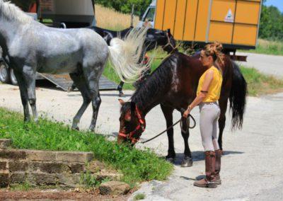 Weekend del Cavallo all Agriturismo La Cittadella di Montemonaco56