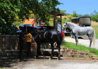 Weekend del Cavallo all Agriturismo La Cittadella di Montemonaco57