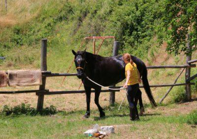 Weekend del Cavallo all Agriturismo La Cittadella di Montemonaco61