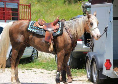 Weekend del Cavallo all Agriturismo La Cittadella di Montemonaco62
