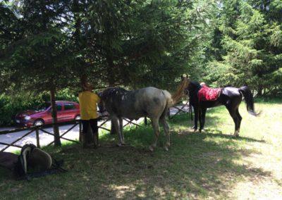 Weekend del Cavallo all Agriturismo La Cittadella di Montemonaco66