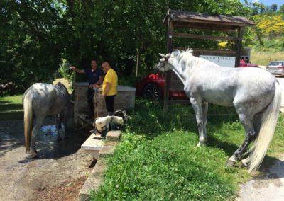 Weekend del Cavallo all Agriturismo La Cittadella di Montemonaco67