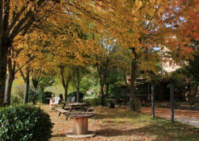 autunno-alla-cittadella-di-montemonaco25